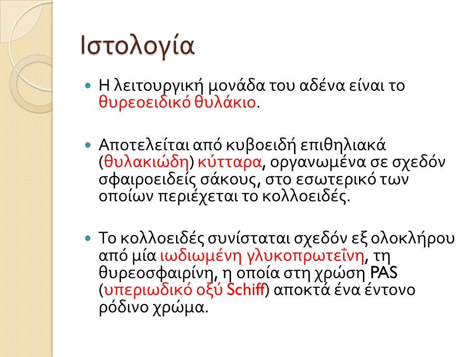 Ιστολογία Η λειτουργική μονάδα του αδένα είναι το θυρεοειδικό θυλάκιο.