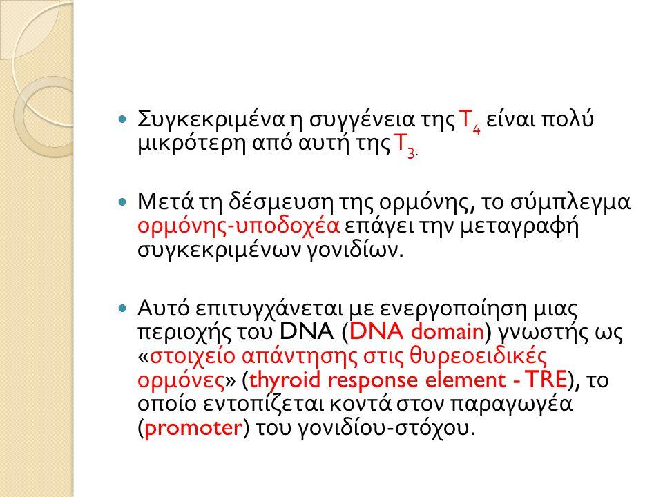 Συγκεκριμένα η συγγένεια της Τ 4 είναι πολύ μικρότερη από αυτή της Τ 3.