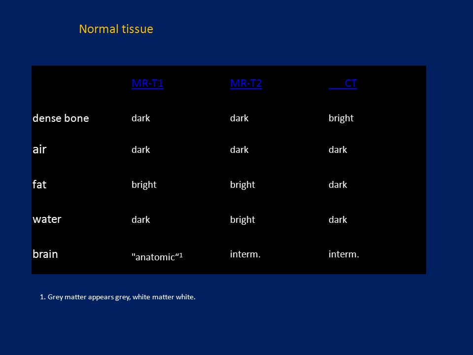 MR-T1MR-T2 CT dense bone dark bright air dark fat bright dark water darkbrightdark brain anatomic 1 interm.