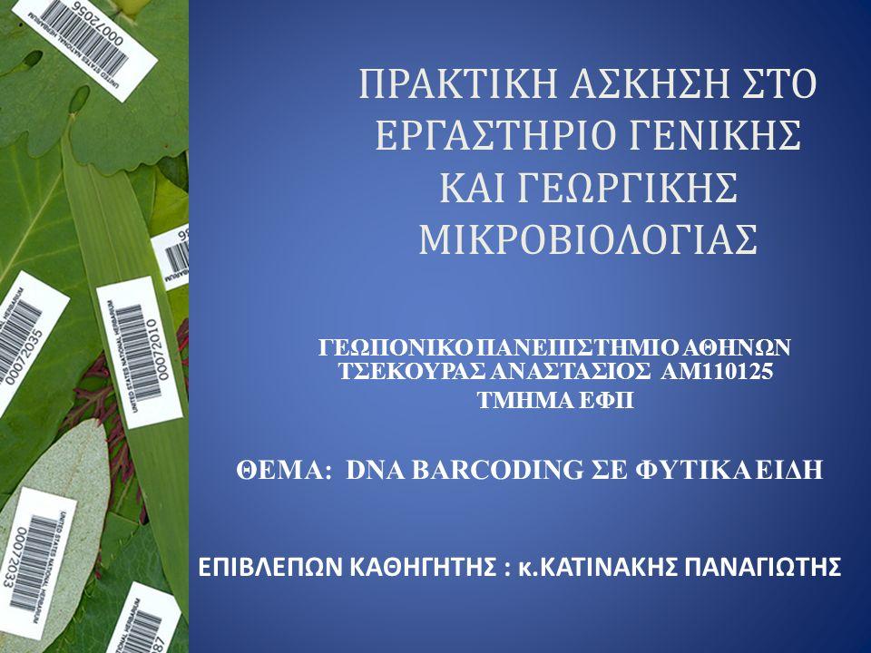 ΠΡΑΚΤΙΚΗ ΑΣΚΗΣΗ ΣΤΟ ΕΡΓΑΣΤΗΡΙΟ ΓΕΝΙΚΗΣ ΚΑΙ ΓΕΩΡΓΙΚΗΣ ΜΙΚΡΟΒΙΟΛΟΓΙΑΣ ΓΕΩΠΟΝΙΚΟ ΠΑΝΕΠΙΣΤΗΜΙΟ ΑΘΗΝΩΝ ΤΣΕΚΟΥΡΑΣ ΑΝΑΣΤΑΣΙΟΣ ΑΜ110125 ΤΜΗΜΑ ΕΦΠ ΘΕΜΑ: DNA BARCODING ΣΕ ΦΥΤΙΚΑ ΕΙΔΗ ΕΠΙΒΛΕΠΩΝ KAΘΗΓΗΤΗΣ : κ.ΚATINAKHΣ ΠΑΝΑΓΙΩΤΗΣ