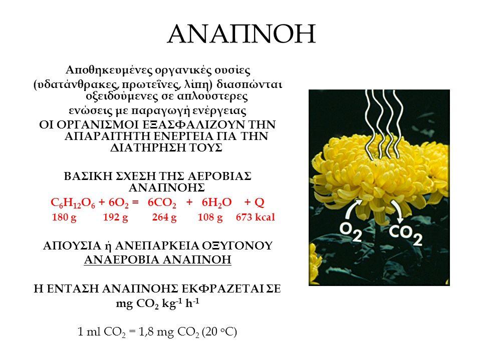 ΑΝΑΠΝΟΗ Αποθηκευμένες οργανικές ουσίες (υδατάνθρακες, πρωτεΐνες, λίπη) διασπώνται οξειδούμενες σε απλούστερες ενώσεις με παραγωγή ενέργειας ΟΙ ΟΡΓΑΝΙΣΜΟΙ ΕΞΑΣΦΑΛIΖΟΥΝ ΤΗΝ ΑΠΑΡΑΙΤΗΤΗ ΕΝΕΡΓΕΙΑ ΓΙΑ ΤΗΝ ΔΙΑΤΗΡΗΣΗ ΤΟΥΣ ΒΑΣΙΚΗ ΣΧΕΣΗ ΤΗΣ ΑΕΡΟΒΙΑΣ ΑΝΑΠΝΟΗΣ C 6 H 12 O 6 + 6O 2 = 6CO 2 + 6H 2 O + Q 180 g 192 g 264 g 108 g 673 kcal ΑΠOΥΣΙΑ ή ΑΝΕΠΑΡΚΕΙΑ ΟΞΥΓΟΝΟΥ ΑΝΑΕΡΟΒΙΑ ΑΝΑΠΝΟΗ Η ΕΝΤΑΣΗ ΑΝΑΠΝΟΗΣ ΕΚΦΡΑΖΕΤΑΙ ΣΕ mg CO 2 kg -1 h -1 1 ml CO 2 = 1,8 mg CO 2 (20 ο C)