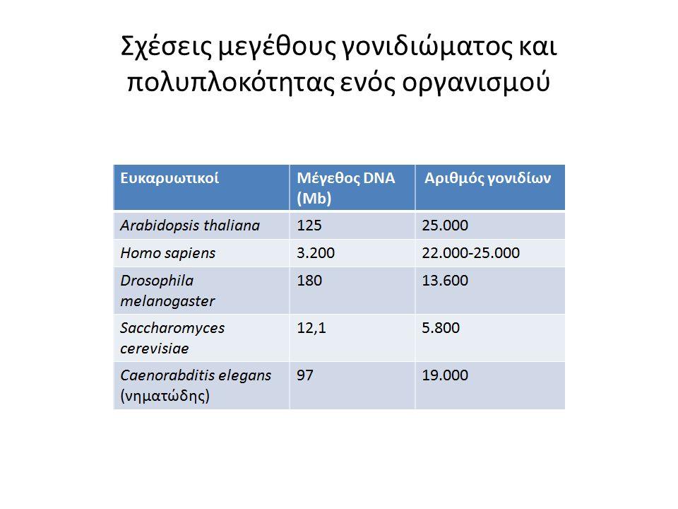 Σχέσεις μεγέθους γονιδιώματος και πολυπλοκότητας ενός οργανισμού