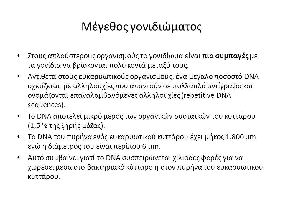 Μέγεθος γονιδιώματος Στους απλούστερους οργανισμούς το γονιδίωμα είναι πιο συμπαγές με τα γονίδια να βρίσκονται πολύ κοντά μεταξύ τους. Αντίθετα στους