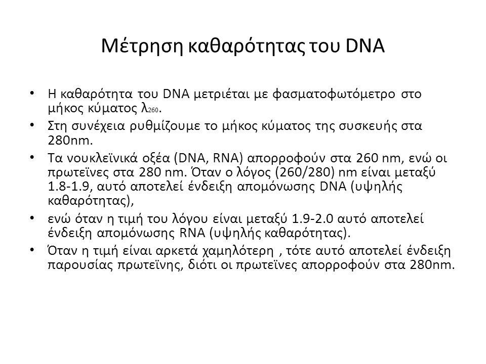 Λαµβάνοντας υπόψη ότι µια µονάδα οπτικής απορρόφησης (OD260 nm =1) αντιστοιχεί περίπου σε 50 µg/ml δίκλωνου DNA ισχύει ότι: C DNA = OD 260 nm x 50 x συντελεστής αραίωσης (ng/µl)