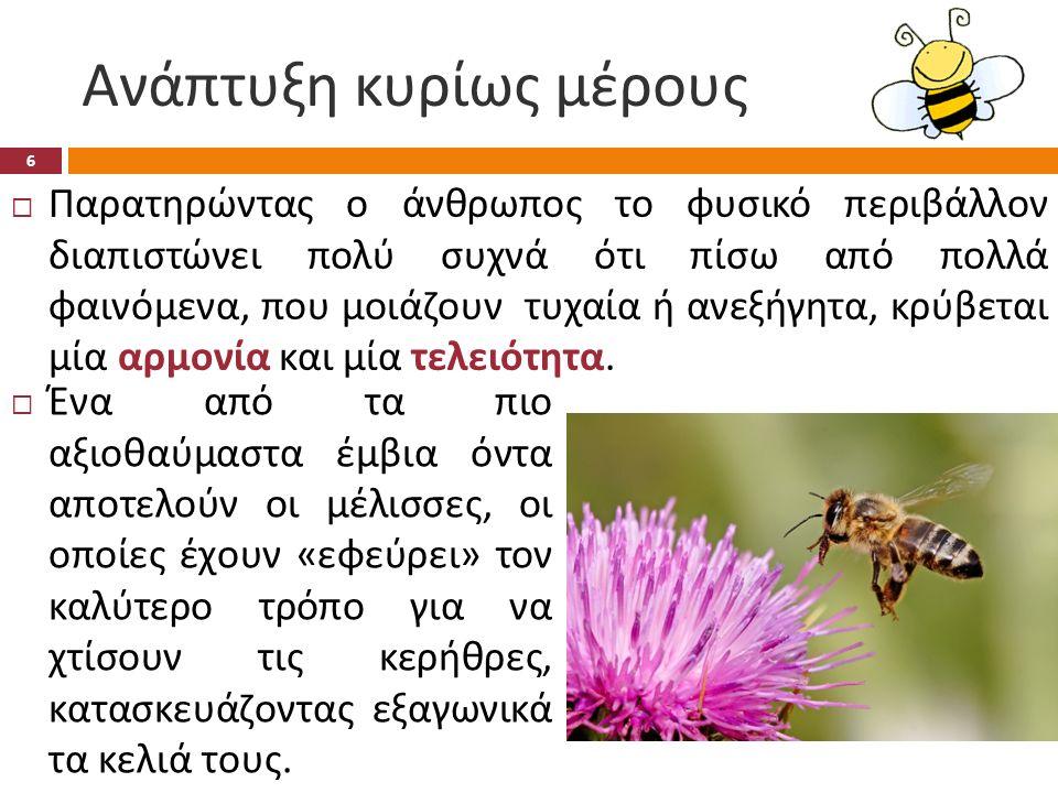 Ανάπτυξη κυρίως μέρους  Επιχειρώντας με μαθηματικό τρόπο να εξηγήσουμε την αιτία της εξάγωνης κερήθρας θα λέγαμε πως μόνο αυτό το σχήμα βοηθάει τις μέλισσες να εξοικονομήσουν πρώτη ύλη, δηλαδή κερί, αλλά και χώρο μέσα στην κυψέλη τους.