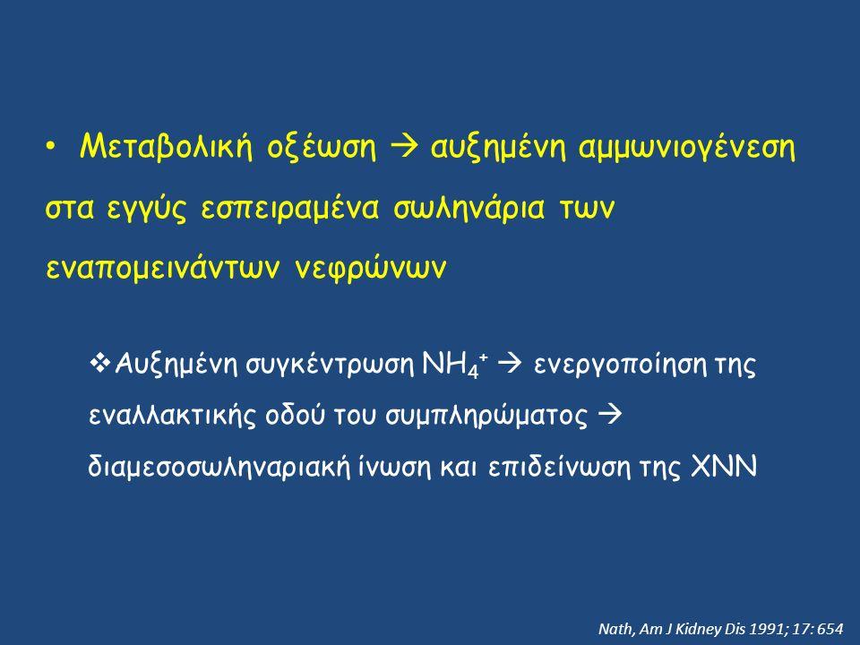 Μεταβολική οξέωση  αυξημένη αμμωνιογένεση στα εγγύς εσπειραμένα σωληνάρια των εναπομεινάντων νεφρώνων  Αυξημένη συγκέντρωση NH 4 +  ενεργοποίηση της εναλλακτικής οδού του συμπληρώματος  διαμεσοσωληναριακή ίνωση και επιδείνωση της ΧΝΝ Nath, Am J Kidney Dis 1991; 17: 654