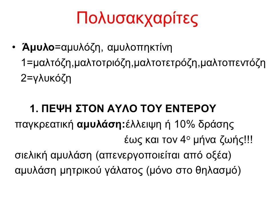 Πολυσακχαρίτες Άμυλο=αμυλόζη, αμυλοπηκτίνη 1=μαλτόζη,μαλτοτριόζη,μαλτοτετρόζη,μαλτοπεντόζη 2=γλυκόζη 1. ΠΕΨΗ ΣΤΟΝ ΑΥΛΟ ΤΟΥ ΕΝΤΕΡΟΥ παγκρεατική αμυλάση