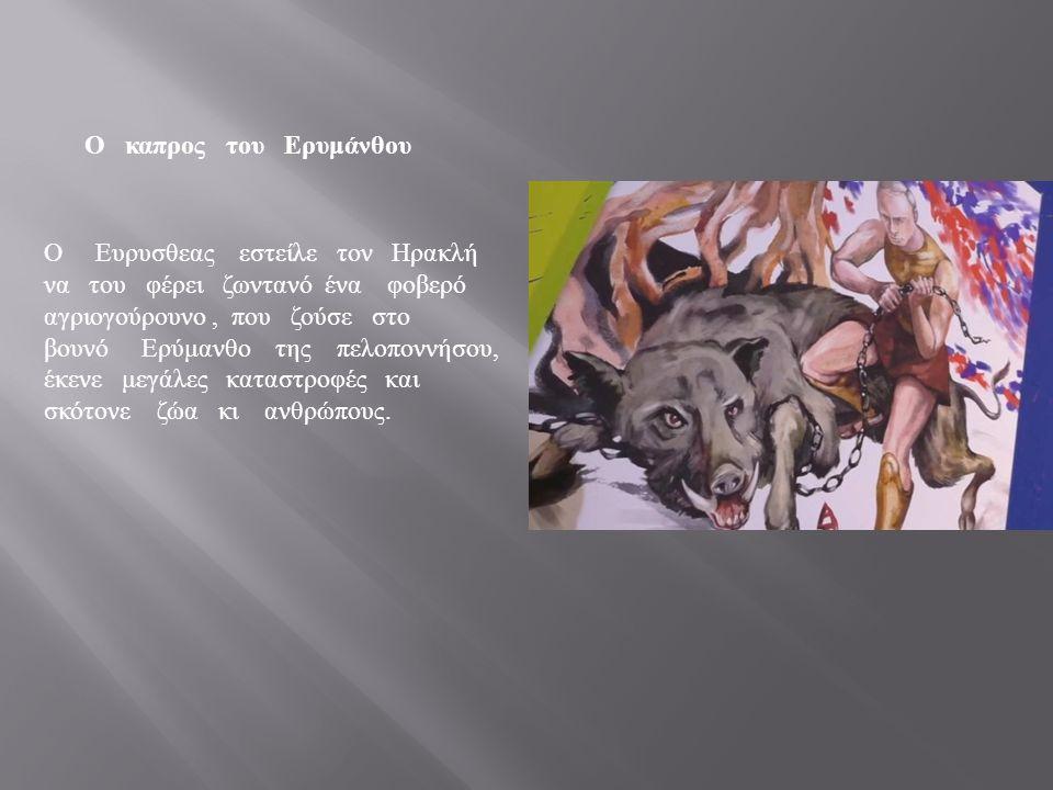 Ο καπρος του Ερυμάνθου Ο Ευρυσθεας εστείλε τον Ηρακλή να του φέρει ζωντανό ένα φοβερό αγριογούρουνο, που ζούσε στο βουνό Ερύμανθο της πελοποννήσου, έκενε μεγάλες καταστροφές και σκότονε ζώα κι ανθρώπους.