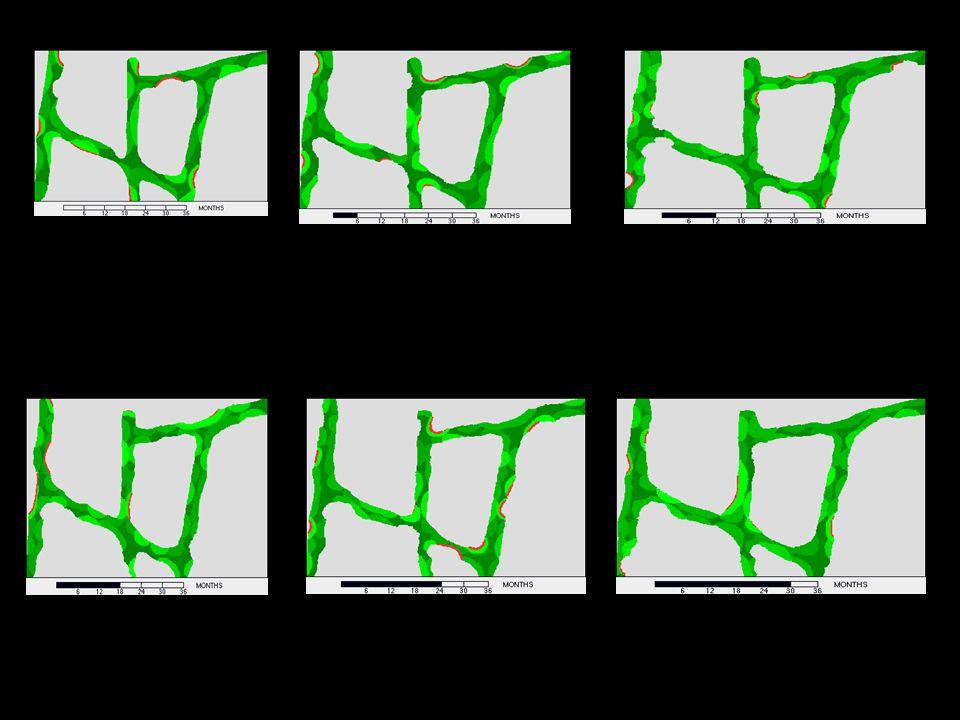 ΣΥΓΧΡΟΝΗ ΑΝΤΙΜΕΤΩΠΙΣΗ ΤΩΝ ΠΡΟΒΛΗΜΑΤΩΝ ΤΗΣ ΜΕΤΕΜΜΗΝΟΠΑΥΣΙΑΚΗΣ ΓΥΝΑΙΚΑΣ Πιθανοί μηχανισμοί της εκλεκτικής ιστικής δράσης των SERMs: Διαφορές στην δέσμευση με τον οιστρογονικό υποδοχέα(ER) Διαφορές στο μηχανισμό δέσμευσης με τον ER Aλλαγές στον ER μετά την δέσμευση Διαφορετική έκφραση των υποτύπων (α και β) του ER Aλλαγές στη μεταγραφική διαδικασία κ.α.