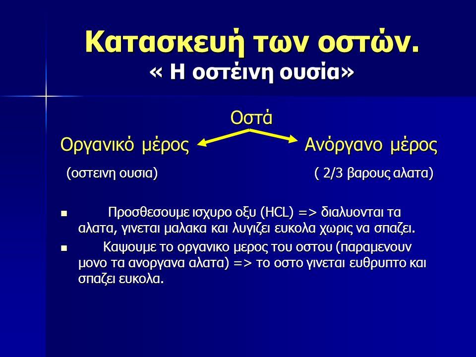 Κατασκευή των οστών. « Η οστέινη ουσία» Οστά Οργανικό μέρος Ανόργανο μέρος (οστεινη ουσια) ( 2/3 βαρους αλατα) (οστεινη ουσια) ( 2/3 βαρους αλατα) Προ