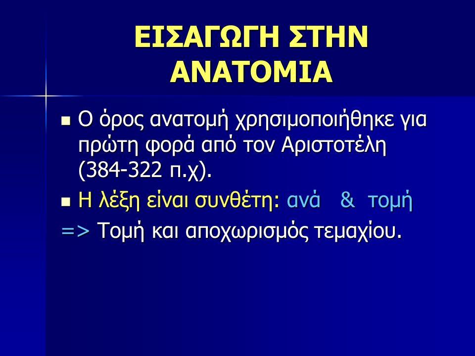 ΕΙΣΑΓΩΓΗ ΣΤΗΝ ΑΝΑΤΟΜΙΑ Ο όρος ανατομή χρησιμοποιήθηκε για πρώτη φορά από τον Αριστοτέλη (384-322 π.χ). Ο όρος ανατομή χρησιμοποιήθηκε για πρώτη φορά α