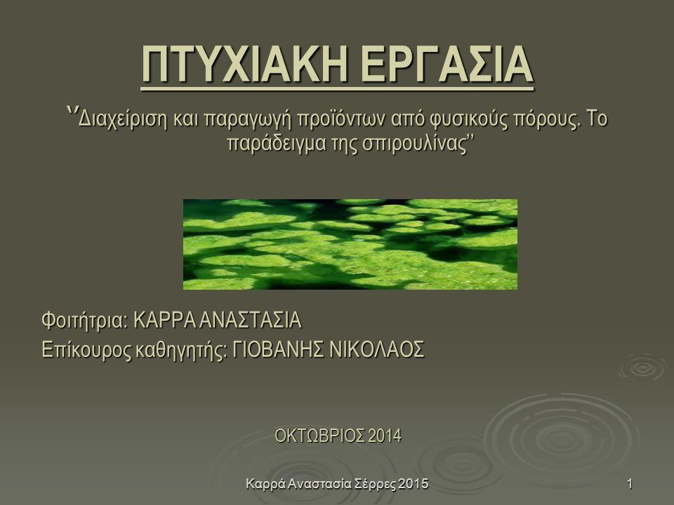Καρρά Αναστασία Σέρρες 20151 ΠΤΥΧΙΑΚΗ ΕΡΓΑΣΙΑ '' Διαχείριση και παραγωγή προϊόντων από φυσικούς πόρους.