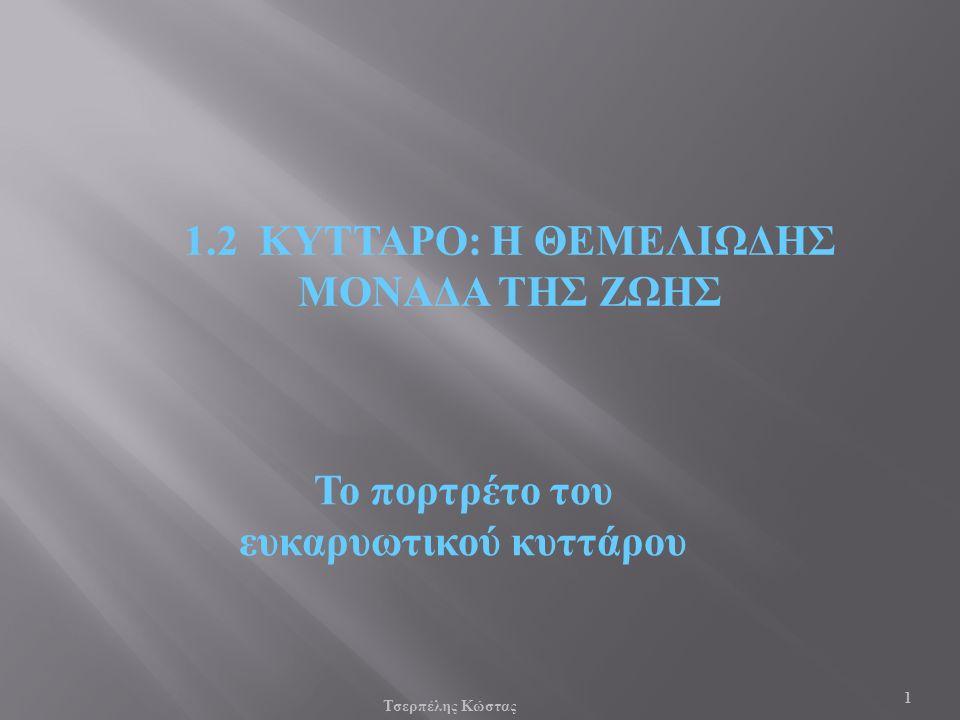 Παν. Πάλλα - ΕΚΦΕ Ν. ΣΜΥΡΝΗΣ 12 Ωάριο και σπερματοζωάρια