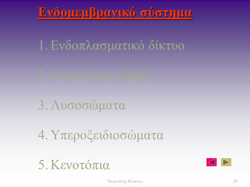 Ενδομεμβρανικό σύστημα 1.Ενδοπλασματικό δίκτυο 2.Σύμπλεγμα Golgi 3.Λυσοσώματα 4.Υπεροξειδιοσώματα 5.Κενοτόπια 29 Τσερπέλης Κώστας