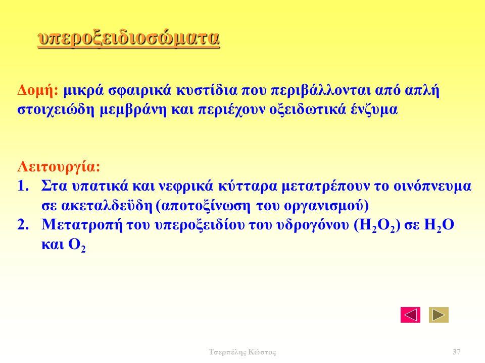 υπεροξειδιοσώματα Δομή: μικρά σφαιρικά κυστίδια που περιβάλλονται από απλή στοιχειώδη μεμβράνη και περιέχουν οξειδωτικά ένζυμα Λειτουργία: 1.Στα υπατικά και νεφρικά κύτταρα μετατρέπουν το οινόπνευμα σε ακεταλδεϋδη (αποτοξίνωση του οργανισμού) 2.Μετατροπή του υπεροξειδίου του υδρογόνου (Η 2 Ο 2 ) σε Η 2 Ο και Ο 2 37 Τσερπέλης Κώστας