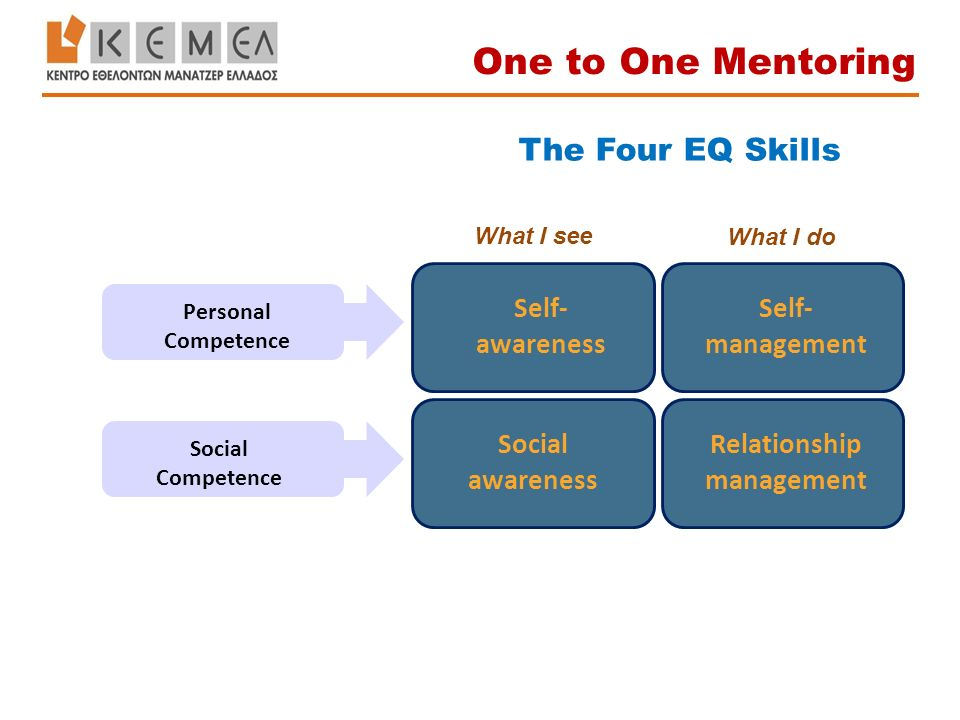 The Four EQ Skills Self- awareness Self- management Social awareness Relationship management Personal Competence Social Competence What I see What I do One to One Mentoring