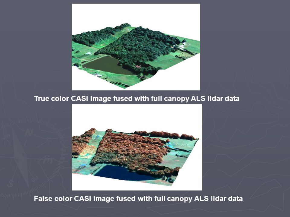 True color CASI image fused with full canopy ALS lidar data False color CASI image fused with full canopy ALS lidar data