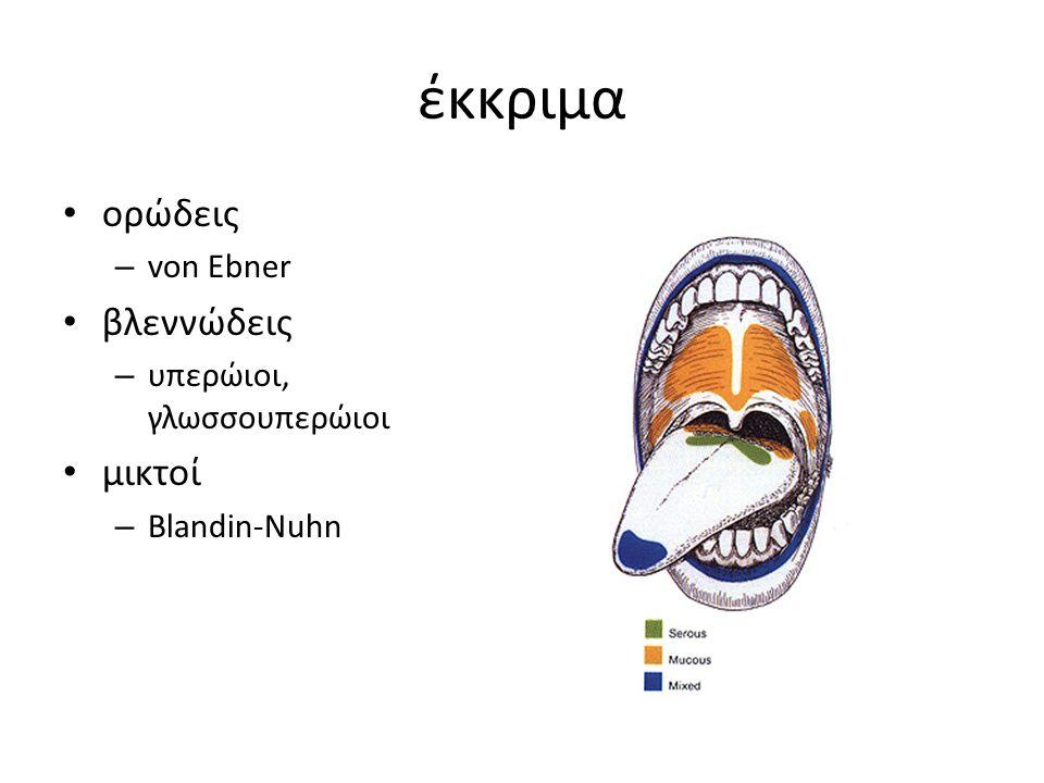 έκκριμα ορώδεις – von Ebner βλεννώδεις – υπερώιοι, γλωσσουπερώιοι μικτοί – Blandin-Nuhn