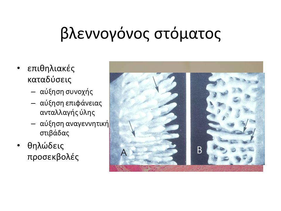 σμηγματογόνοι αδένες