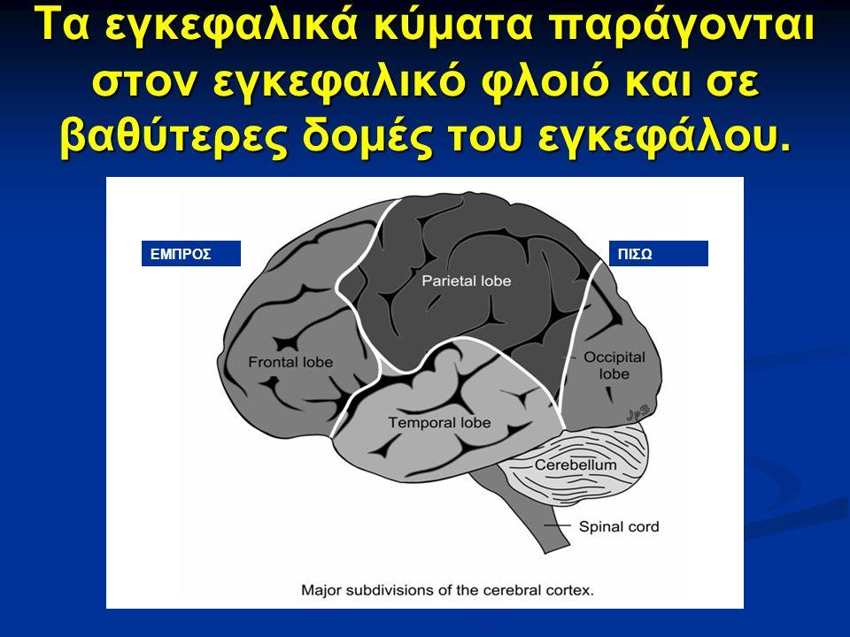 Τα εγκεφαλικά κύματα παράγονται στον εγκεφαλικό φλοιό και σε βαθύτερες δομές του εγκεφάλου.