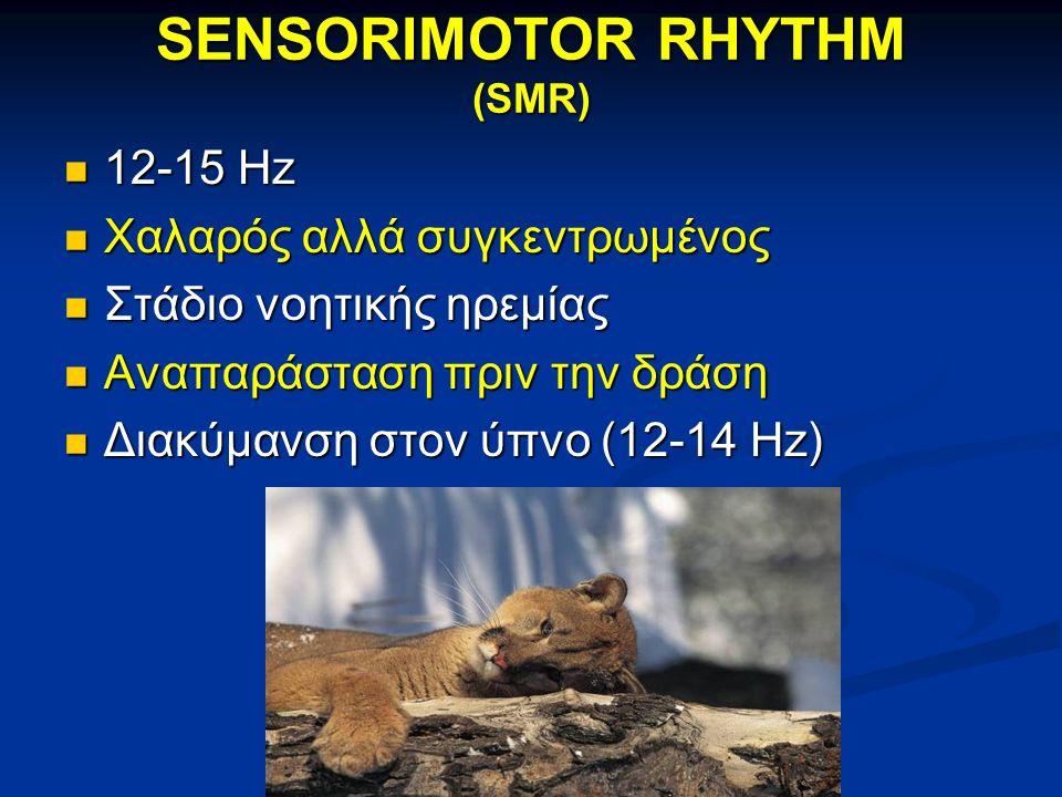 SENSORIMOTOR RHYTHM (SMR) 12-15 Hz 12-15 Hz Χαλαρός αλλά συγκεντρωμένος Χαλαρός αλλά συγκεντρωμένος Στάδιο νοητικής ηρεμίας Στάδιο νοητικής ηρεμίας Αναπαράσταση πριν την δράση Αναπαράσταση πριν την δράση Διακύμανση στον ύπνο (12-14 Hz) Διακύμανση στον ύπνο (12-14 Hz)