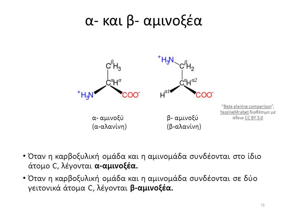 α- και β- αμινοξέα Όταν η καρβοξυλική ομάδα και η αμινομάδα συνδέονται στο ίδιο άτομο C, λέγονται α-αμινοξέα.