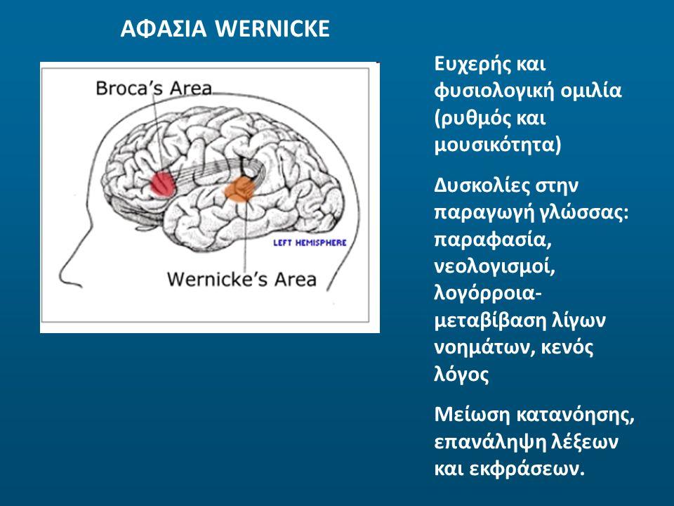 ΑΦΑΣΙΑ WERNICKE Ευχερής και φυσιολογική ομιλία (ρυθμός και μουσικότητα) Δυσκολίες στην παραγωγή γλώσσας: παραφασία, νεολογισμοί, λογόρροια- μεταβίβαση