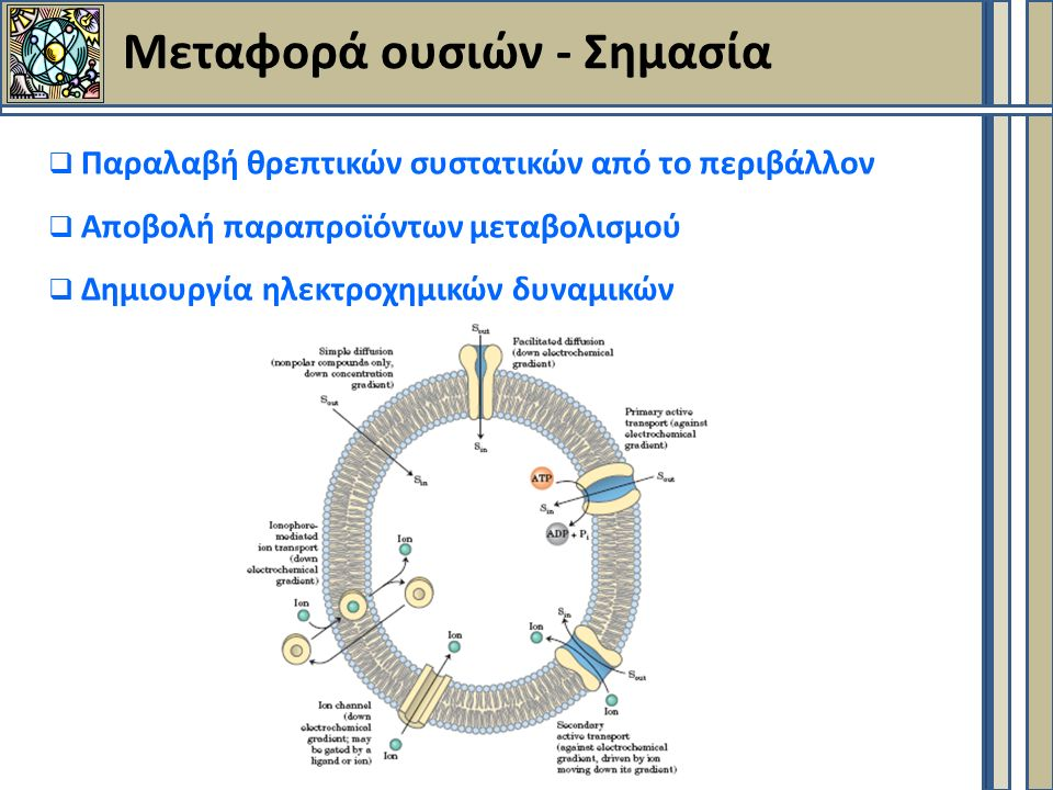 Μεταφορά ουσιών - Σημασία  Παραλαβή θρεπτικών συστατικών από το περιβάλλον  Αποβολή παραπροϊόντων μεταβολισμού  Δημιουργία ηλεκτροχημικών δυναμικών