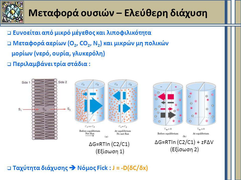 Μεταφορά ουσιών – Ελεύθερη διάχυση  Ευνοείται από μικρό μέγεθος και λιποφιλικότητα  Μεταφορά αερίων (Ο 2, CΟ 2, N 2 ) και μικρών μη πολικών μορίων (νερό, ουρία, γλυκερόλη)  Περιλαμβάνει τρία στάδια :  Ταχύτητα διάχυσης  Νόμος Fick : J = -D(δC/δx) ΔG=RTln (C2/C1) (Εξίσωση 1) ΔG=RTln (C2/C1) + zFΔV (Εξίσωση 2)