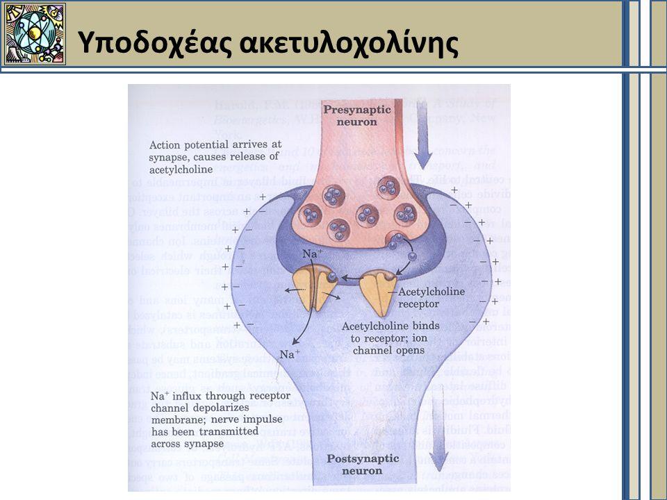 Yποδοχέας ακετυλοχολίνης