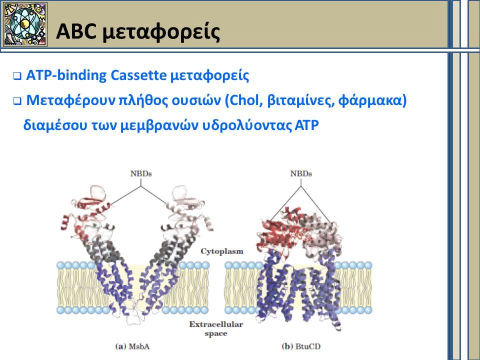 ABC μεταφορείς  ΑTP-binding Cassette μεταφορείς  Μεταφέρουν πλήθος ουσιών (Chol, βιταμίνες, φάρμακα) διαμέσου των μεμβρανών υδρολύοντας ΑΤΡ