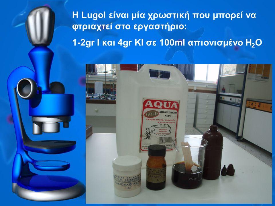 H Lugol είναι μία χρωστική που μπορεί να φτριαχτεί στο εργαστήριο: 1-2gr I και 4gr KI σε 100ml απιονισμένο H 2 O