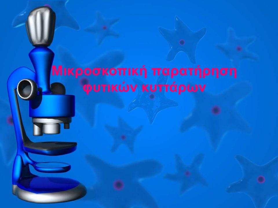Μικροσκοπική παρατήρηση φυτικών κυττάρων