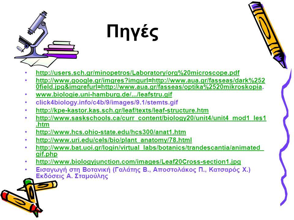 Πηγές http://users.sch.gr/minopetros/Laboratory/org%20microscope.pdf http://www.google.gr/imgres imgurl=http://www.aua.gr/fasseas/dark%252 0field.jpg&imgrefurl=http://www.aua.gr/fasseas/optika%2520mikroskopia.http://www.google.gr/imgres imgurl=http://www.aua.gr/fasseas/dark%252 0field.jpg&imgrefurl=http://www.aua.gr/fasseas/optika%2520mikroskopia www.biologie.uni-hamburg.de/.../leafstru.gif click4biology.info/c4b/9/images/9.1/stemts.gif http://kpe-kastor.kas.sch.gr/leaf/texts/leaf-structure.htm http://www.saskschools.ca/curr_content/biology20/unit4/unit4_mod1_les1.htmhttp://www.saskschools.ca/curr_content/biology20/unit4/unit4_mod1_les1.htm http://www.hcs.ohio-state.edu/hcs300/anat1.htm http://www.uri.edu/cels/bio/plant_anatomy/78.html http://www.bat.uoi.gr/login/virtual_labs/botanics/trandescantia/animated_ gif.phphttp://www.bat.uoi.gr/login/virtual_labs/botanics/trandescantia/animated_ gif.php http://www.biologyjunction.com/images/Leaf20Cross-section1.jpg Εισαγωγή στη Βοτανική (Γαλάτης Β., Αποστολάκος Π., Κατσαρός Χ.) Εκδόσεις Α.