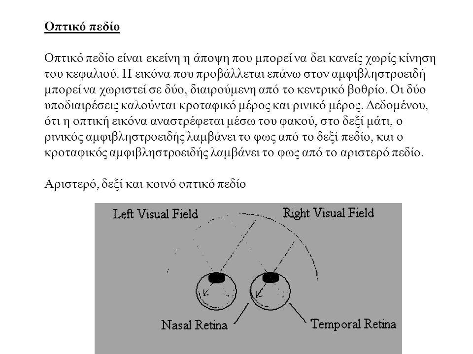 Οπτικό πεδίο Οπτικό πεδίο είναι εκείνη η άποψη που μπορεί να δει κανείς χωρίς κίνηση του κεφαλιού.