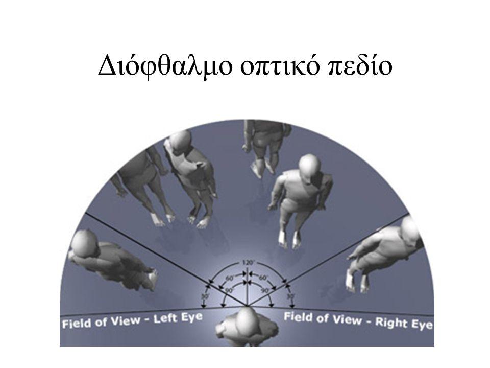Διόφθαλμο οπτικό πεδίο