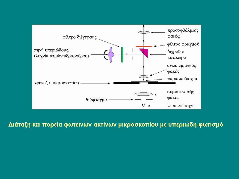 Διάταξη και πορεία φωτεινών ακτίνων μικροσκοπίου με υπεριώδη φωτισμό