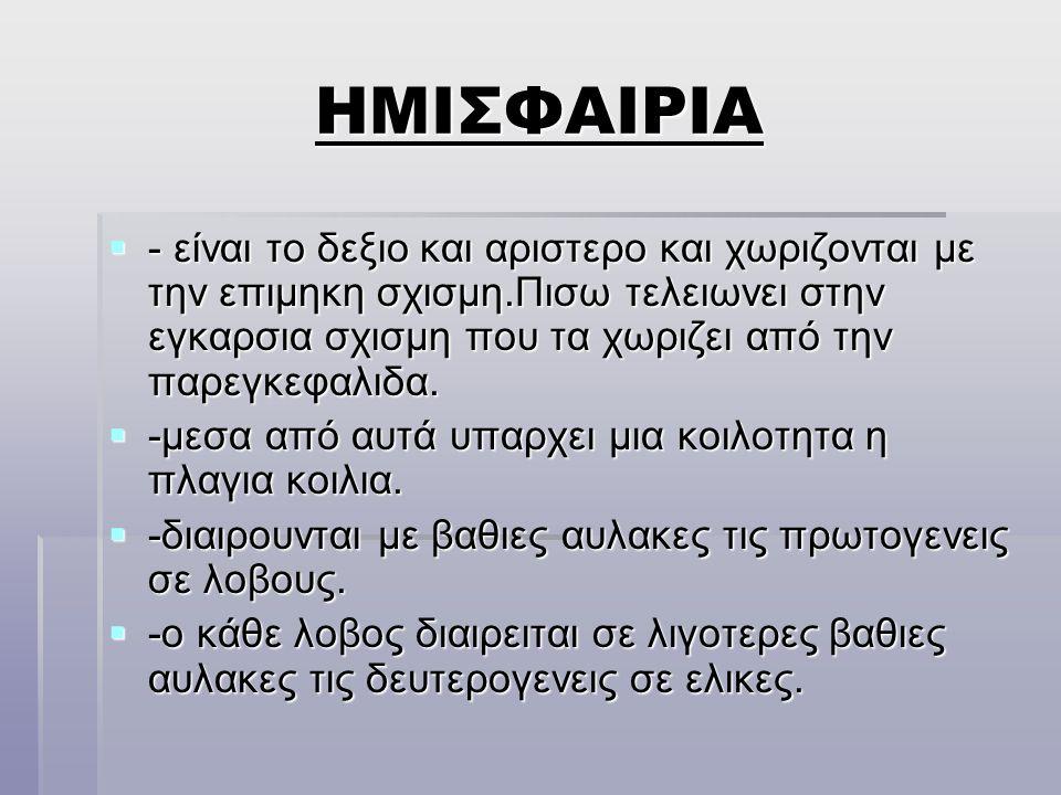 ΕΓΚΕΦΑΛΙΚΑ ΝΕΥΡΑ  I.