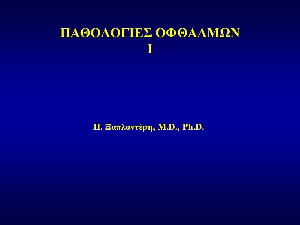 Π. Ξαπλαντέρη, M.D., Ph.D. ΠΑΘΟΛΟΓΙΕΣ ΟΦΘΑΛΜΩΝ I