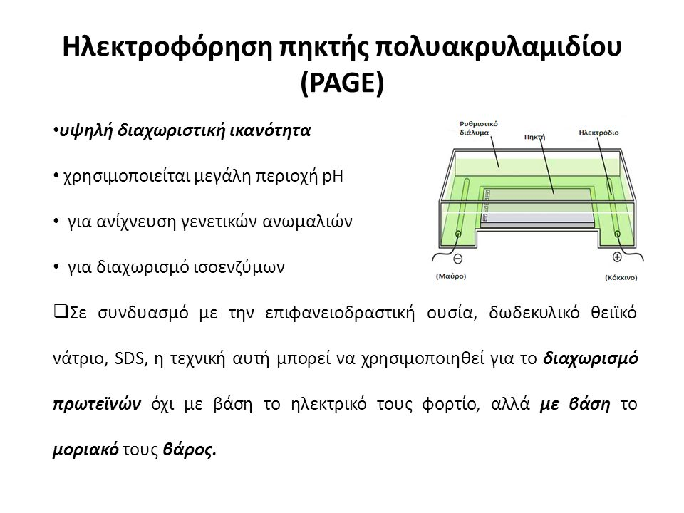Ηλεκτροφόρηση πηκτής πολυακρυλαμιδίου (PAGE) υψηλή διαχωριστική ικανότητα χρησιμοποιείται μεγάλη περιοχή pΗ για ανίχνευση γενετικών ανωμαλιών για διαχωρισμό ισοενζύμων  Σε συνδυασμό με την επιφανειοδραστική ουσία, δωδεκυλικό θειϊκό νάτριο, SDS, η τεχνική αυτή μπορεί να χρησιμοποιηθεί για το διαχωρισμό πρωτεϊνών όχι με βάση το ηλεκτρικό τους φορτίο, αλλά με βάση το μοριακό τους βάρος.