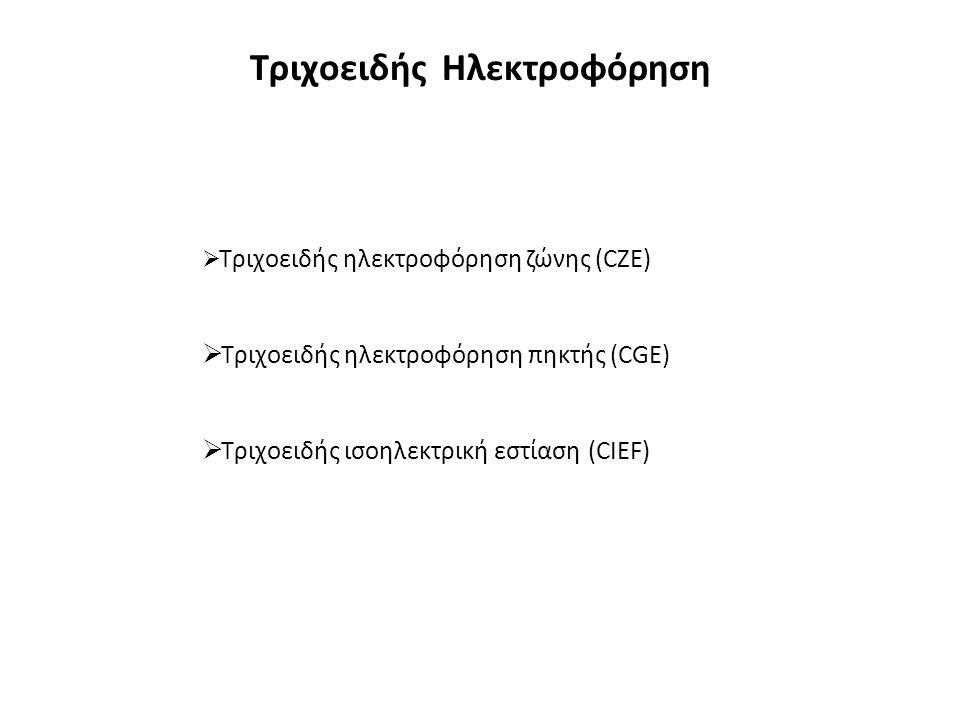 Τριχοειδής Ηλεκτροφόρηση  Τριχοειδής ηλεκτροφόρηση ζώνης (CZE)  Τριχοειδής ηλεκτροφόρηση πηκτής (CGE)  Τριχοειδής ισοηλεκτρική εστίαση (CIEF)