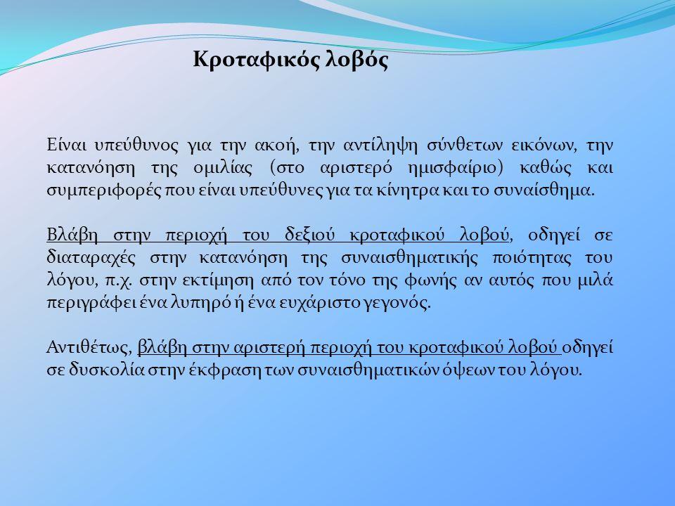 Κροταφικός λοβός Είναι υπεύθυνος για την ακοή, την αντίληψη σύνθετων εικόνων, την κατανόηση της ομιλίας (στο αριστερό ημισφαίριο) καθώς και συμπεριφορ