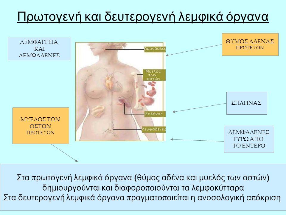 26 ΑΥΤΟΑΝΟΣΑ ΝΟΣΗΜΑΤΑ ΣΥΓΚΡΟΥΣΗ ΜΕ ΤΟΝ ΙΔΙΟ ΤΟΝ ΟΡΓΑΝΙΣΜΟ Σε σχέση με την ποικιλία των μικροοργανισμών, το ανοσοποιητικό σύστημα καταφέρνει να υπερασπίζεται εξαιρετικά τον οργανισμό.