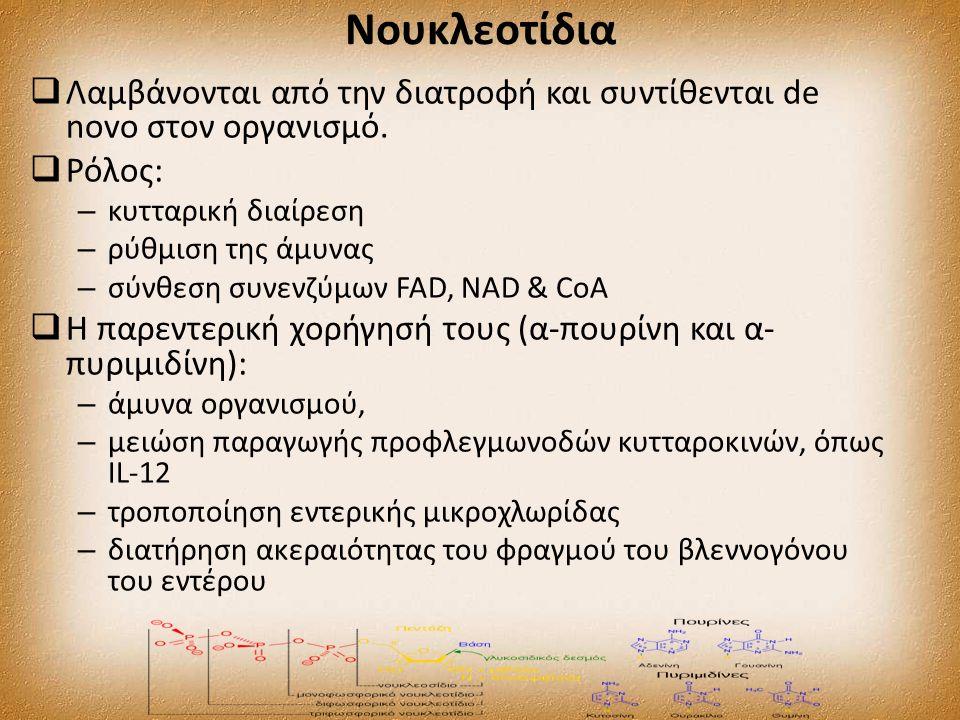 Νουκλεοτίδια  Λαμβάνονται από την διατροφή και συντίθενται de novo στον οργανισμό.