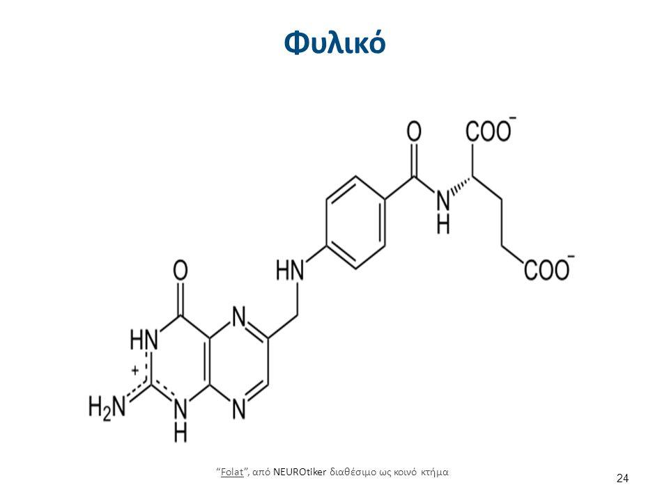 Φυλικό 24 Folat , από NEUROtiker διαθέσιμο ως κοινό κτήμαFolat