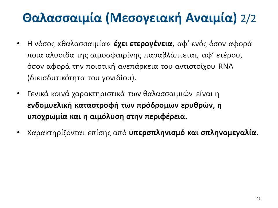 Θαλασσαιμία (Μεσογειακή Αναιμία) 2/2 Η νόσος «θαλασσαιμία» έχει ετερογένεια, αφ' ενός όσον αφορά ποια αλυσίδα της αιμοσφαιρίνης παραβλάπτεται, αφ' ετέ