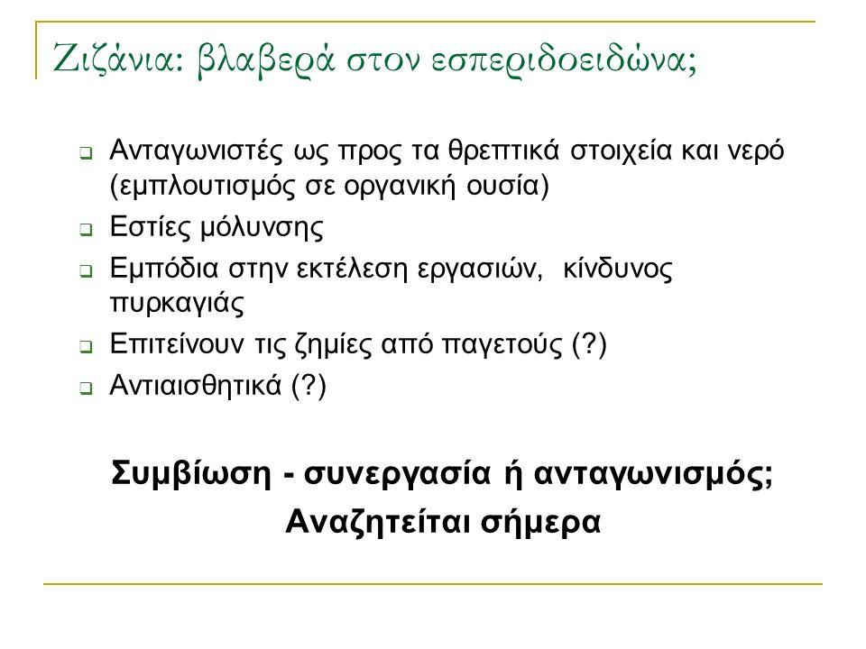 Ζιζάνια: βλαβερά στον εσπεριδοειδώνα;  Ανταγωνιστές ως προς τα θρεπτικά στοιχεία και νερό (εμπλουτισμός σε οργανική ουσία)  Εστίες μόλυνσης  Εμπόδια στην εκτέλεση εργασιών, κίνδυνος πυρκαγιάς  Επιτείνουν τις ζημίες από παγετούς ( )  Αντιαισθητικά ( ) Συμβίωση - συνεργασία ή ανταγωνισμός; Αναζητείται σήμερα