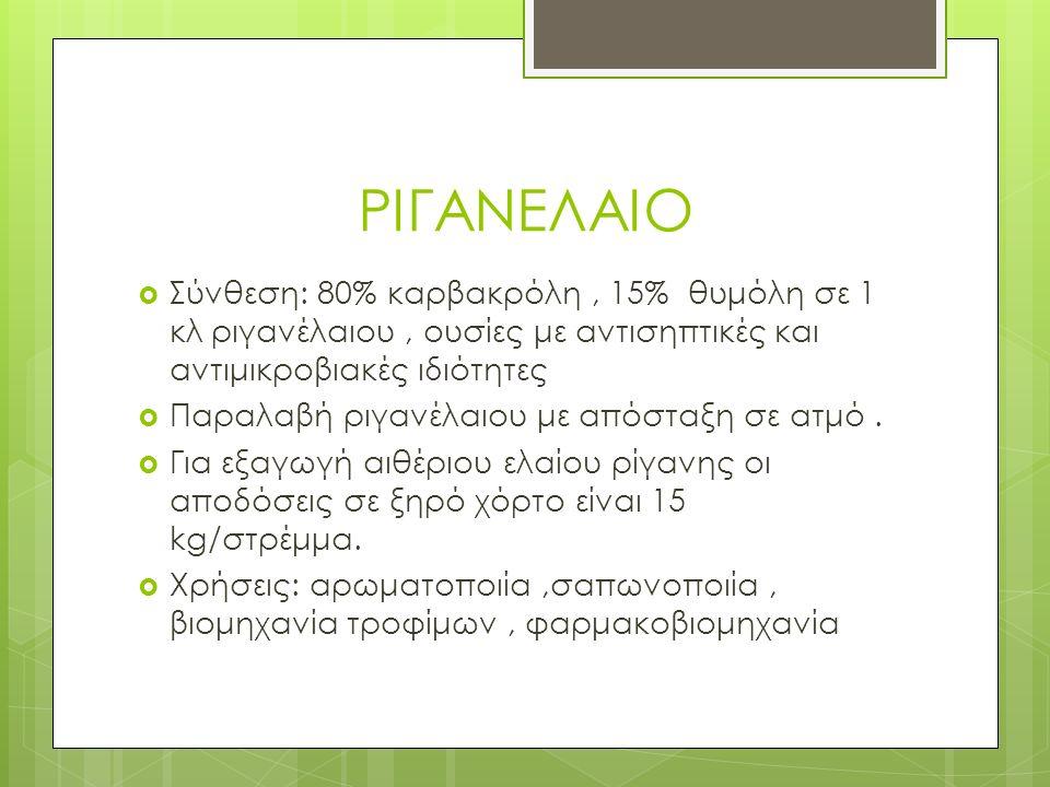 ΡΙΓΑΝΕΛΑΙΟ  Σύνθεση: 80% καρβακρόλη, 15% θυμόλη σε 1 κλ ριγανέλαιου, ουσίες με αντισηπτικές και αντιμικροβιακές ιδιότητες  Παραλαβή ριγανέλαιου με απόσταξη σε ατμό.