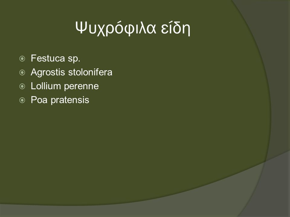 Ψυχρόφιλα είδη  Festuca sp.  Agrostis stolonifera  Lollium perenne  Poa pratensis