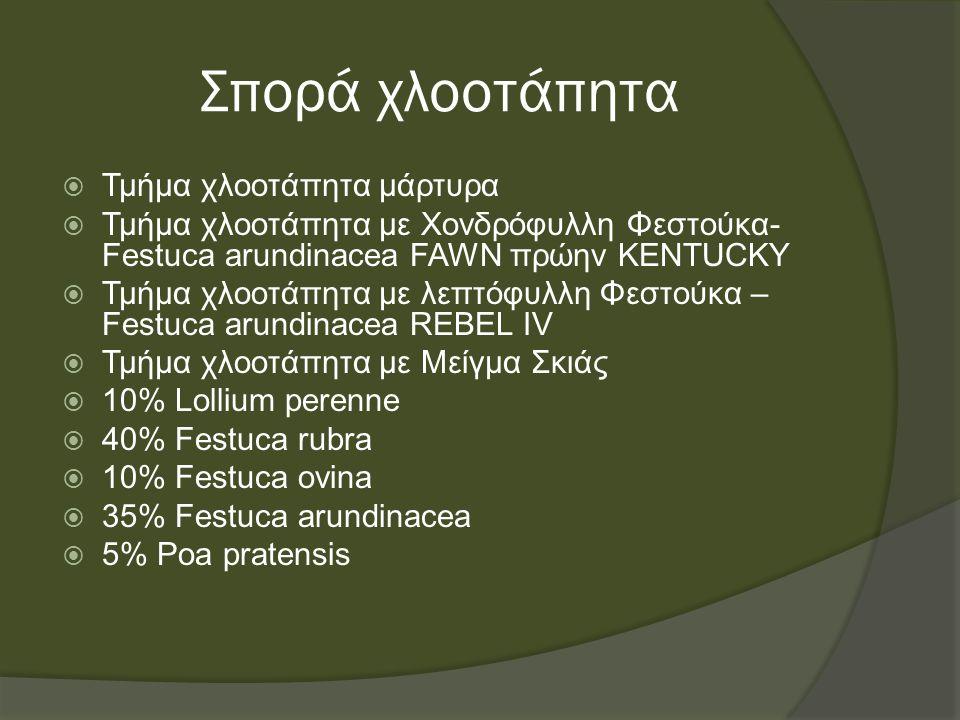 Σπορά χλοοτάπητα  Τμήμα χλοοτάπητα με Κικούγιο - Pennisetum clandestinum  Τμήμα χλοοτάπητα με Διχόνδρα – Dichondra repens  Τμήμα χλοοτάπητα με Poa pratensis  Τμήμα χλοοτάπητα με Ουγκάντα – Cynodon dactylon  Τμήμα χλοοτάπητα με Agrostis stolonifera  Φύτευση έτοιμου τάπητα  Φύτευση με φυτά εδαφοκάλυψης